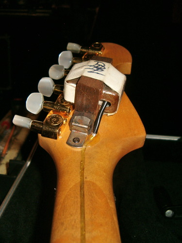photo-doug-blair-guitars-blade-Washburn-N4s-WASP